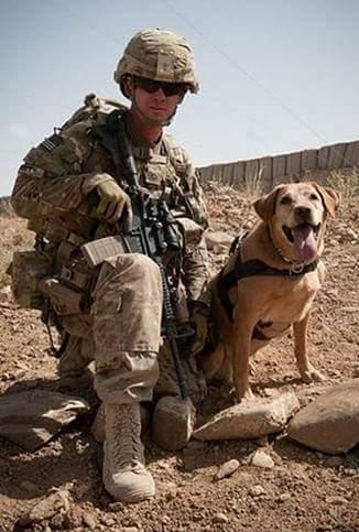 Фото военного с собакой